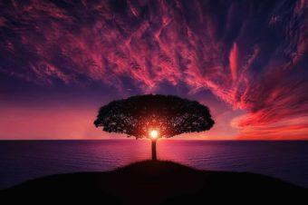 Slaptieji Jėzaus žodžiai: I dalis Pasaulis ir Tėvo karalystė. II dalis Žmogaus namiškiai taps jam priešais (audio)