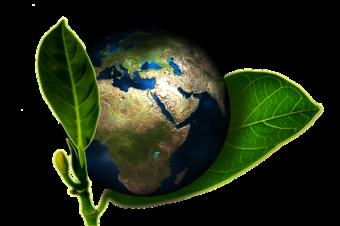 Rūgštus sveikatos prieskonis: Aplinka ir sveikata. Kvėpavimas (audio)