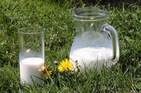 Rūgštus sveikatos prieskonis: Nežinomas pienas ir racionali mityba (audio)