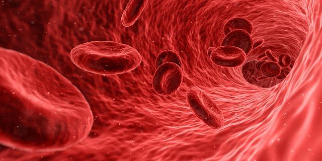 Rūgštus sveikatos prieskonis: Kraujo reakcija į pH, kraujotakos ligos. (audio)
