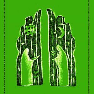 Virsmų knyga (2013 m)